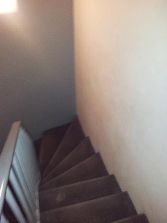 Hotel du Parc Saint Charles: stairway