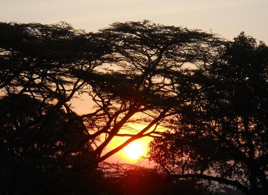 Mara Eden Safari Camp: beautiful sunsets
