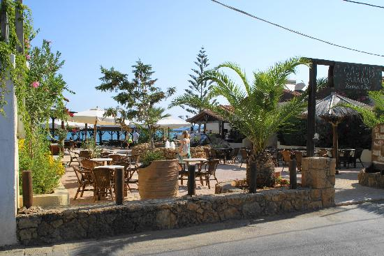 Cactus Beach Hotel & Bungalows : Ingresso Area spiaggia
