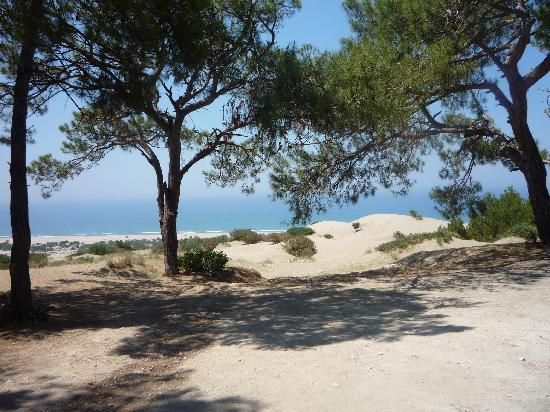 Patara Beach: Just through the forest, now the dunes...