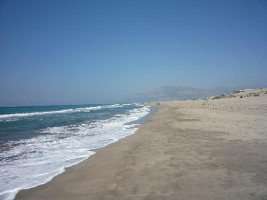 Patara Beach: It just keeps going!....