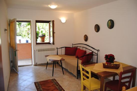 Suncani Apartmani: The hall and the main room (living room and kitchen)