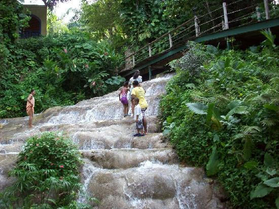 Coyaba River Garden and Museum : Climbing the Falls