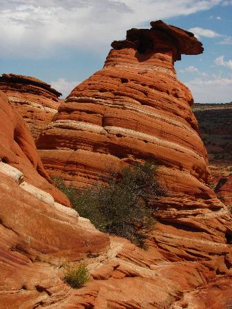 The Wave at Coyote Buttes: a butte along the hike