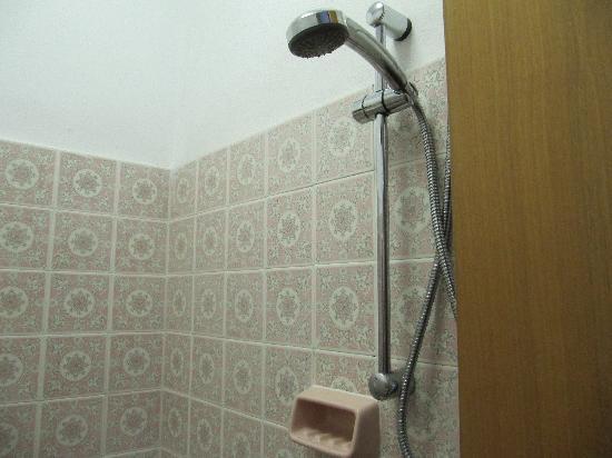 Hotel Maxi Heron : Particolari del bagno
