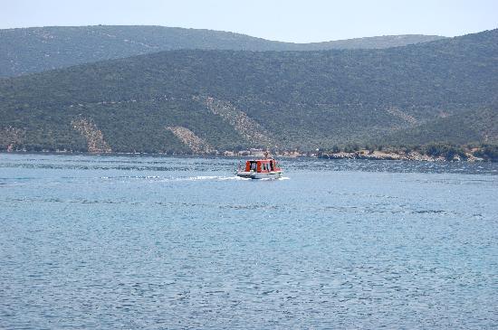 Pounda Paou: Trikeri Island ferry
