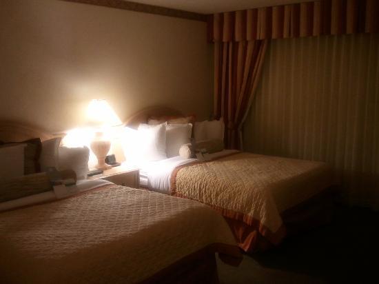 Wyndham El Paso Airport Hotel and Water Park: bedroom