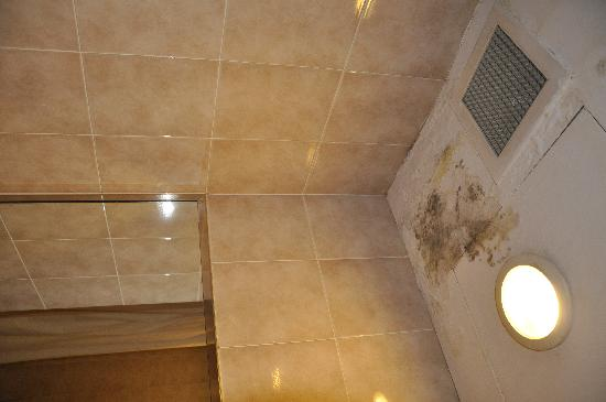 Park View Hotel: mold in bathroom