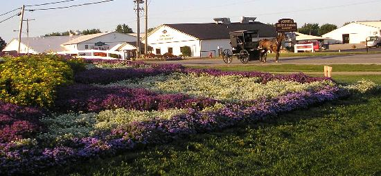 Farmstead Inn - Shipshewana: Flowers - and Horse and Buggy - pass all day