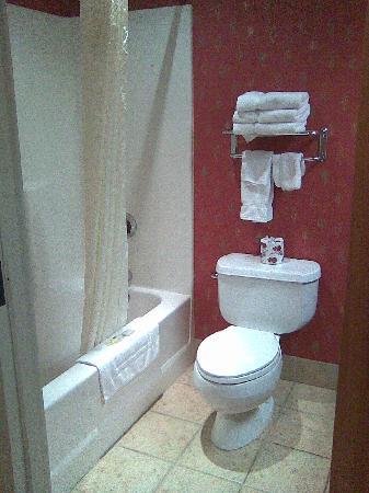 Ute Mountain Casino Hotel: Bathroom