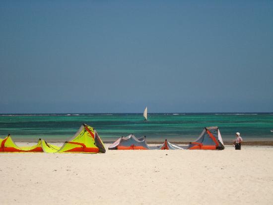 Alfajiri Villas: diani beach