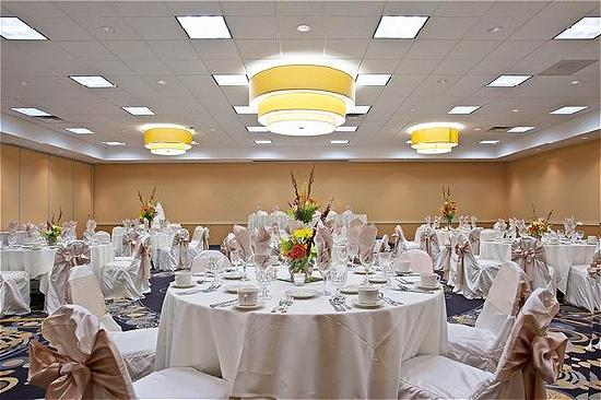 هوليداي إن شيكاجو - إلك جروف: Ballroom at Holiday Inn Elk Grove Village