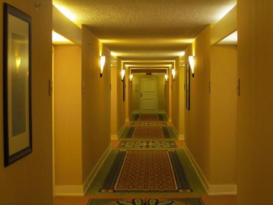 Hilton Tampa Airport Westshore: hallway