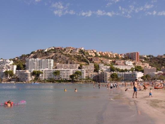 Castello bild von globales pionero santa ponsa for Aparthotel d or jardin de playa santa ponsa