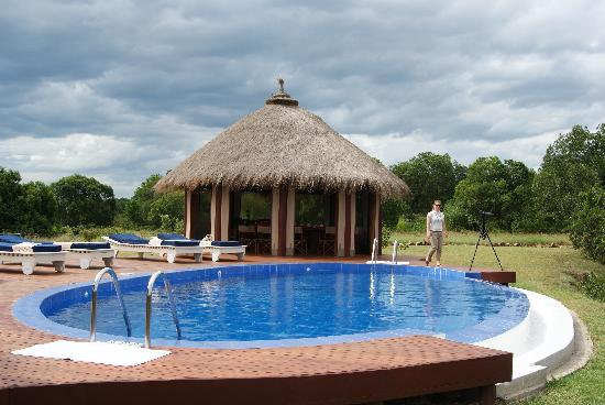 Ngerende Island Lodge: Pool