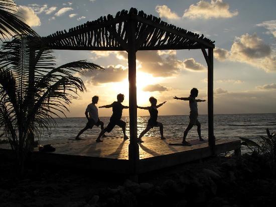 Off The Wall Dive Center & Resort: Yoga Deck overlooking ocean