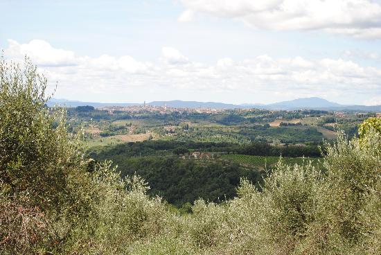 Villa Catignano: Tranquility