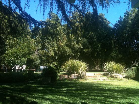 Pepper Tree Retreat: Wish I was there having tea on the lawn again!