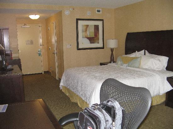 Hilton Garden Inn Washington DC / Bethesda: room 509
