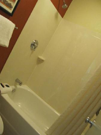 Red Roof Inn Buffalo Niagara Airport : Shower