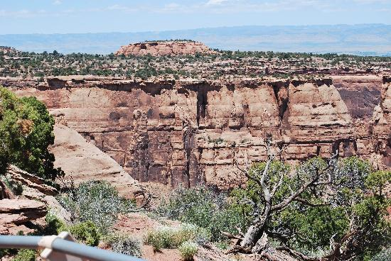 Grand Junction Bed and Breakfast: Colorado National Monument