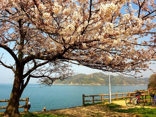 Kuroshima Seashore Park Lookout Park