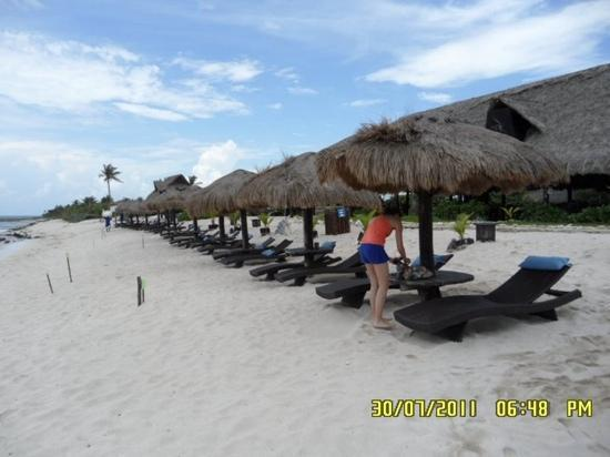 Blue Venado Beach Club: paradiso terrestre