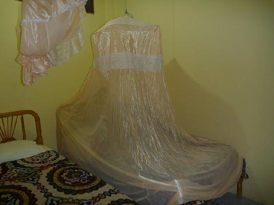 Hostal Machalilla: ベットと蚊帳
