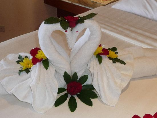 Pacific Club Resort: Intertwined Swans