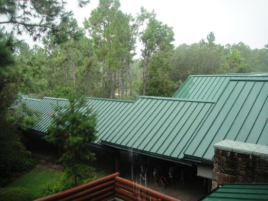 Disney's Wilderness Lodge: Room view of the bus walkway