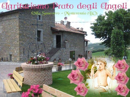 Villa di Sassonero, Italy: Sulle dolci colline dell'Appennino tosco emiliano e più precisamente nella valle del torrente Si