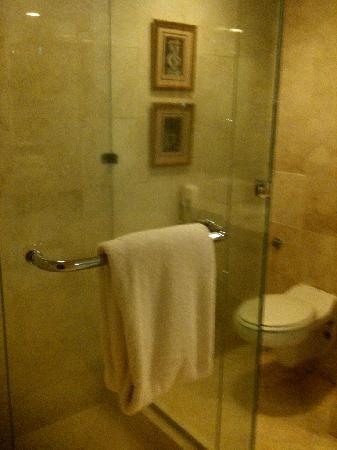 AYANA Midplaza JAKARTA: Shower