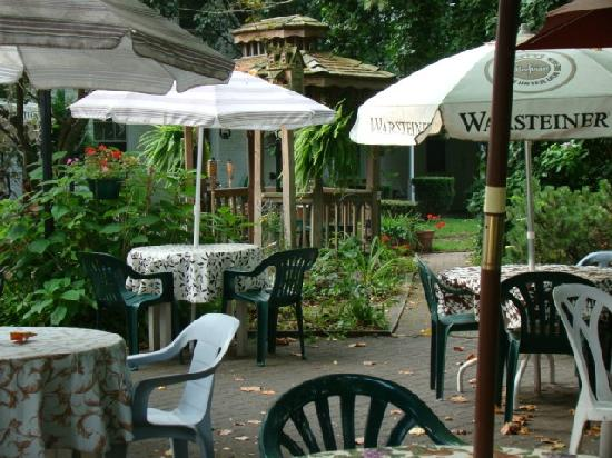 The Courtyard: Backyard garden