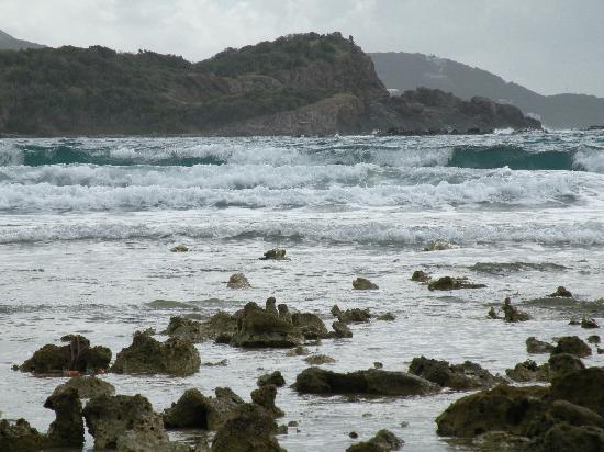 Virgin Islands Campground: Limestone Beach