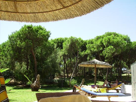 SENSIMAR Isla Cristina Palace & Spa: vistas desde la piscina