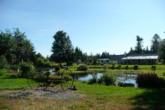 "Nelson's Duckpond : View from ""barn"" across the Pond. Owner's house and gift shop."