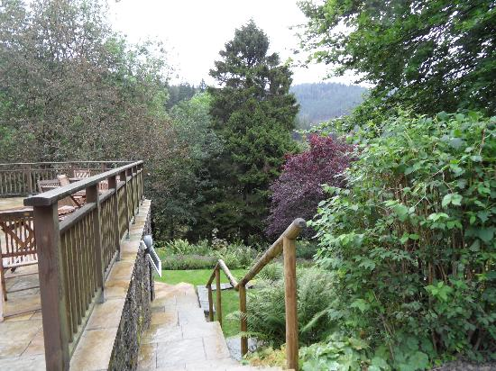 The Cottage in the Wood: The Gardens