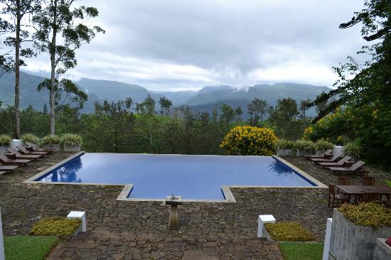 The Lavender House: Swimming Pool