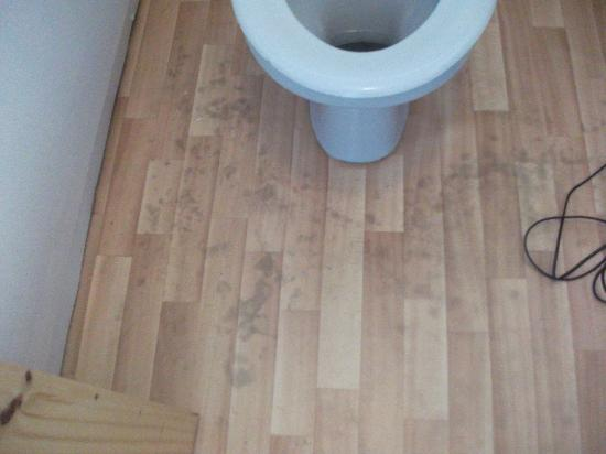 Solway Holiday Village: The wildlife that grows in the bathroom!