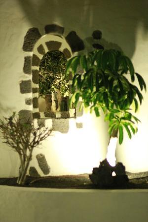 Hotel THe Volcan Lanzarote: gardens