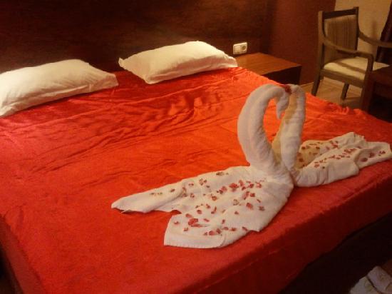 Alba Royal Hotel照片