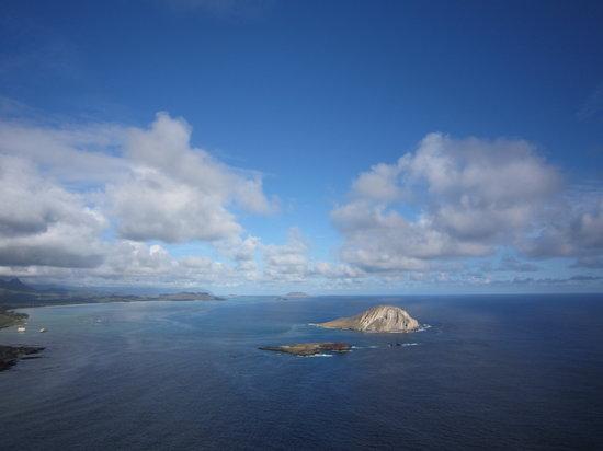 Hawaiian Ocean Promotions - Day Tours: ラビットアイランド。マカプウ岬から見えます!