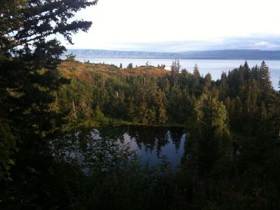 Alaska's Ridgewood Wilderness Lodge: view from outside deck, different location