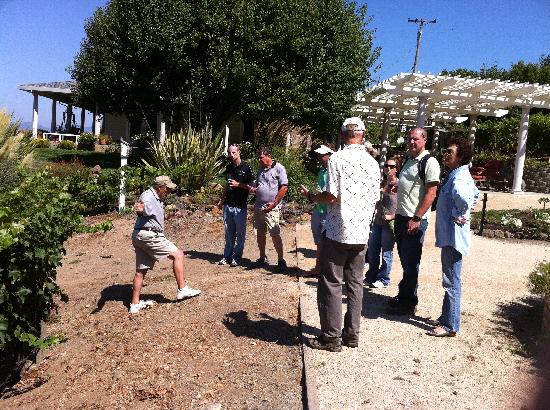 Chic Family Tours: learning about maintaing a vineyard from a local