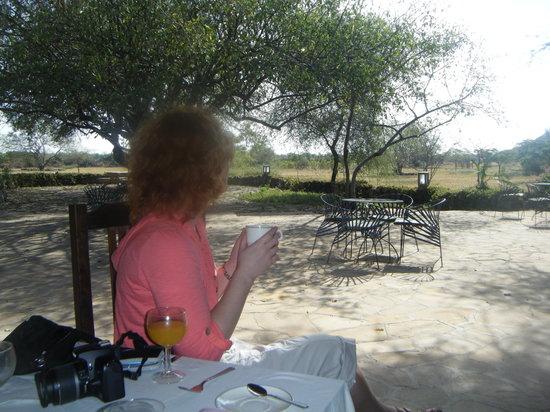Kia Lodge – Kilimanjaro Airport: The view while eating breakfast