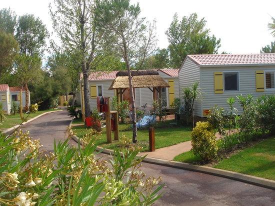Serignan, France: Le Quartier Hawai Confort Fleurs