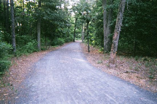 Big Oaks Family Campground: Junction/Breakwater Trail...right down the road from campground