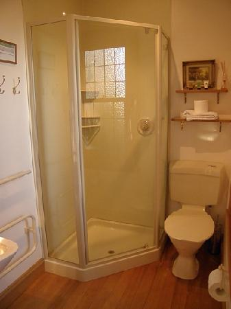 Collingwood Manor Bed and Breakfast: large shower in ensuite