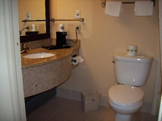 BEST WESTERN PLUS New Englander Motor Inn: Bathroom