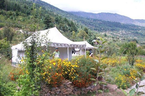 The Monk-Kalpa